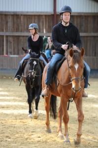 Betriebliche Pferdeversicherung