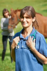 Pferde-Op Versicherung