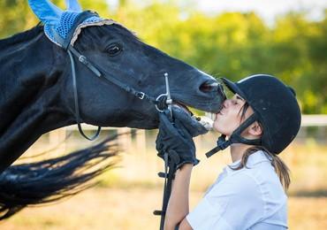 Checkliste: Das erste eigene Pferd kaufen